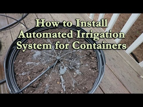 How to Install an Automated Irrigation System for Container Vegetables and Flowers