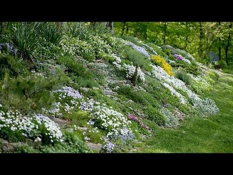 Amazing 30 Hillside Garden Design Ideas - Garden Design Ideas