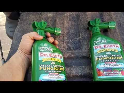 Dr. Earth fungicide for Roses. | Lucky 7 Landscapes.