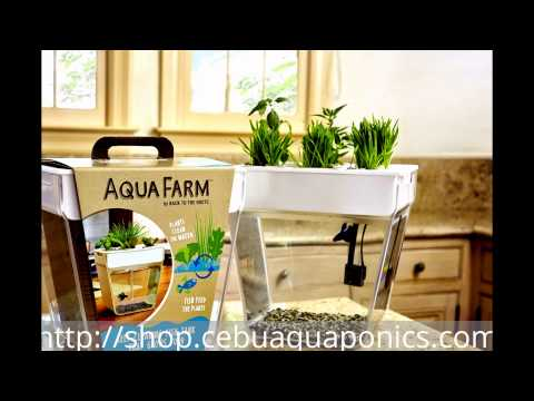 AquaFarm-mini Aquaponics kit