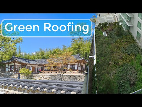 Benefits of Green Roofing - What are The Advantages and Disadvantages of a Green Roof? Gardening