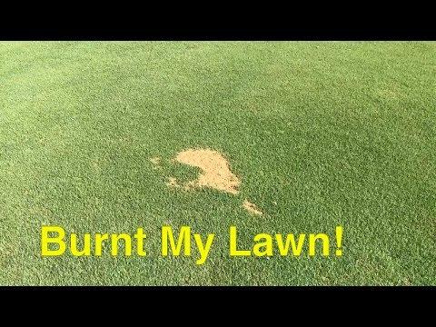 FERTILIZER BURN - Fertilizer SPILL BURNT MY BERMUDA GRASS Lawn!