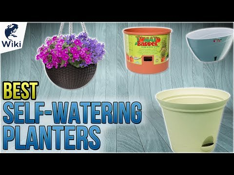 10 Best Self-Watering Planters 2018